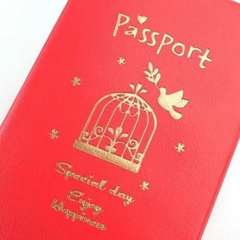 Porta Passaporte - Special Day